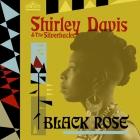 Shirley Davis: rosa negra